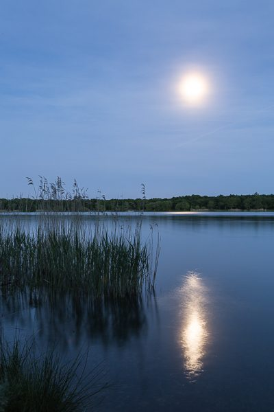 Début de soirée sous la pleine lune, début de nuit au Lac de Reiningue en Alsace