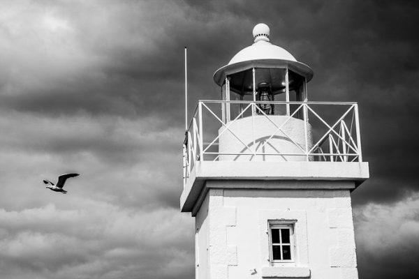 Phare de Barfleur et goéland en noir et blanc sous un ciel chargé de nuages