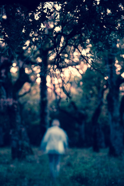 Silhouette se déplaçant dans la forêt