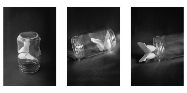 Photo en noir et blanc d'un papillon en papier, d'abord enfermé sous verre, retrouve sa liberté