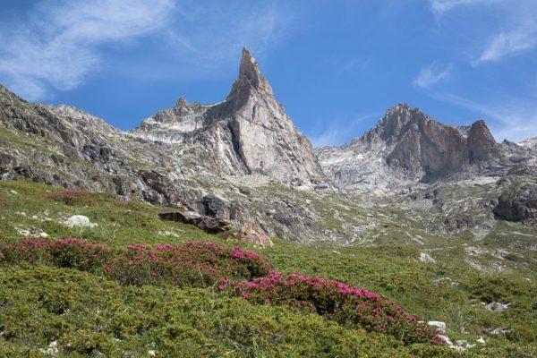 Aiguille Dibona dans le massif des Ecrins